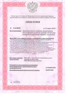 Пожарная лицензия 1